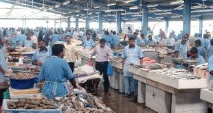 بازار ماهی دبی