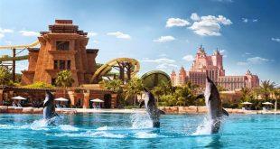 دلفین بی دبی,دلفین های دبی,دلفین دبی,دبی دلفین بی,آدرس دلفین بی دبی,بلیط دلفین بی دبی,تفریحات دلفین بی دبی,مراکز تفریحی دبی,سرگرمی های دبی