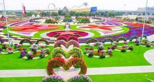 باغ میراکل,باغ میراکل دبی,درباره باغ میراکل,دیدنی های باغ میراکل,قیمت بلیط باغ میراکل دبی,دیدنی های دبی,باغ های دبی
