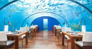 هتل زیر اب دبی,دبی هتل زیر اب,هتل زیر آب جهان,هتل زیر آب دنیا,هتل های لوکس دبی,رزرو هتل در دبی,هتل های دبی