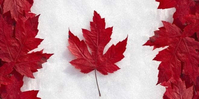 تقسیم بندی ویزا از جهت هدف سفر,ویزا مولتی کانادا,اخذ ویزا 5ساله کانادا,تقسیم بندی ویزا کانادا,سفر به کانادا