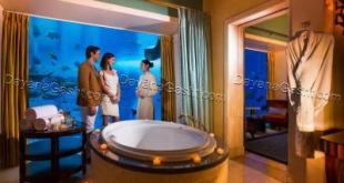 درباره هتل دبی پالم,قیمت هتل دبی پالم,رزرو هتل دبی پالم,خدمات هتل دبی پالم,هتل های دبی,آدرس هتل دبی پالم