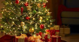 مردم در کریسمس چه می کنند,کریسمس در کانادا,تاریخچه کریسمس,درباره کریسمس در کانادا,دیدنی های کانادا,جشن کریسمس