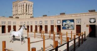 موزه اسب دبی,باشگاه اسب دبی,میدان اسب دبی,مسابقه اسب سواری دبی,ورزش های دبی,تفریحات دبی,انواع اسب ها در دبی,اسب های دبی