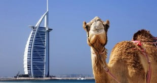 چه وقتی به دبی سفر کنیم,سفر به دبی,جاذبه های گردشگری دبی,دیدنی های دبی,گردشگری در دبی,مکان های دیدنی دبی