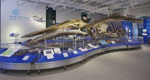 موزه علوم و تکنولوژی در کانادا,موزه های کانادا,سفر به کانادا,موزه علوم کانادا,موزه تکنولوژی کانادا,موزه علوم و تکنولوژی درکانادا