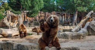 بزگترین باغ وحش دنیا کجاست,بزگترین باغ وحش دنیا,بزگترین باغ وحش های دنیا,باغ وحش های دنیا,بزرگترین باغ وحش جهان