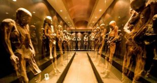 موزه های وحشتناک جهان,موزه های وحشتناک در جهان,موزه دخمه مردگان,موزه مرگ,موزه سیاه چال,موزه های وحشتناک دنیا
